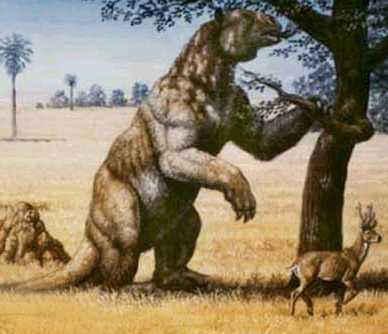 Megatherium - By: Manel Paret Espadaler